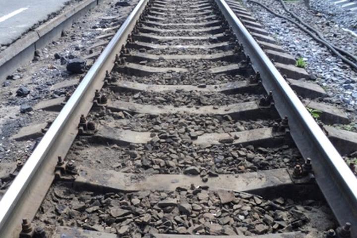 Перевозивший впоезде взрывчатое вещество пассажир схвачен вБиробиджане