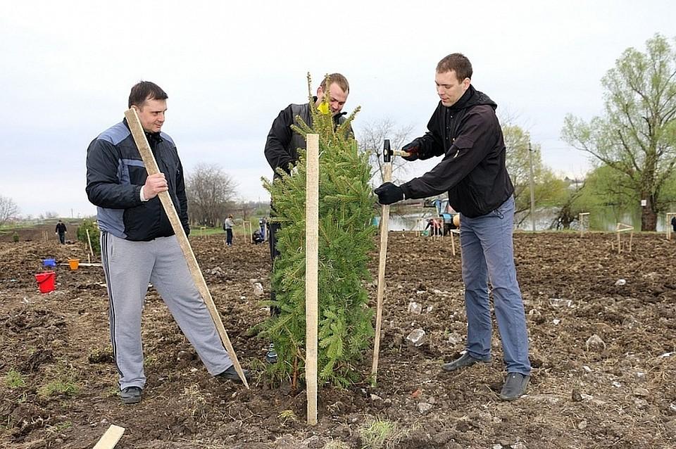 Губернатор Кубани принял участие взакладке нового парка