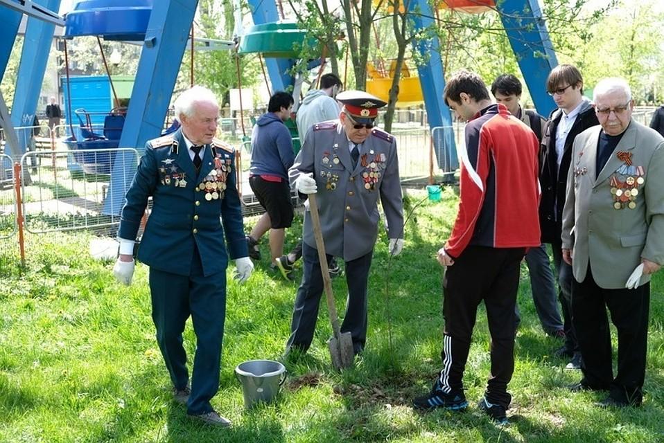 Работники канала «Краснодар» приняли участие ввысадке аллеи вГорячем Ключе