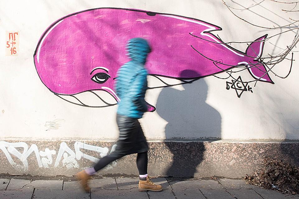 Смертоносные задания подросткам предоставляли сУкраины— Синий кит