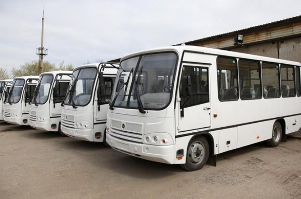 Допоселков Аэропорт иГумрак пустят дополнительные автобусы
