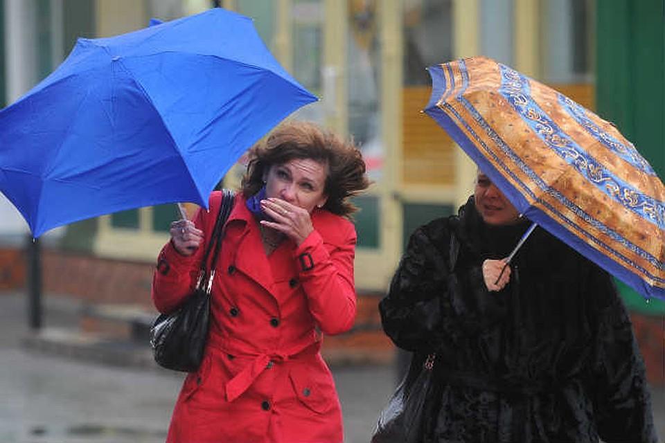 Омские синоптики обещают 30-градусную жару исильные грозы