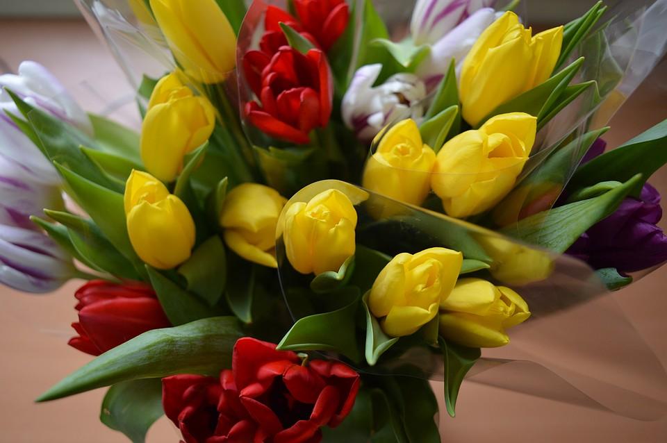 аллергия на цветочную пыльцу лечение