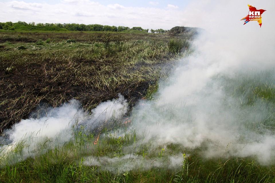 Неделя вАлтайском крае начинается сжары ивысокой пожароопасности