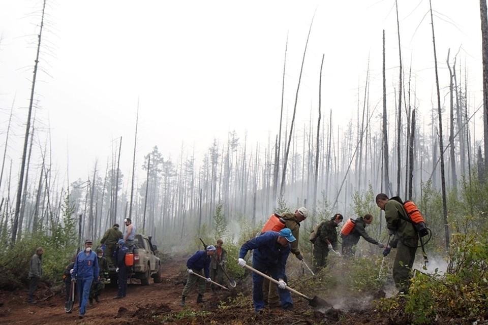 Лес вИркутской области полыхает наплощади неменее 13 тыс. гектаров