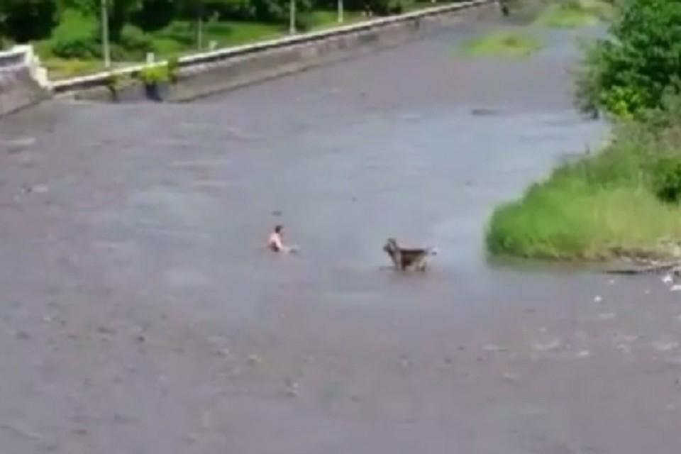 ВСеверной Осетии работники МЧС спасли молодого человека, застрявшего ссобакой наострове