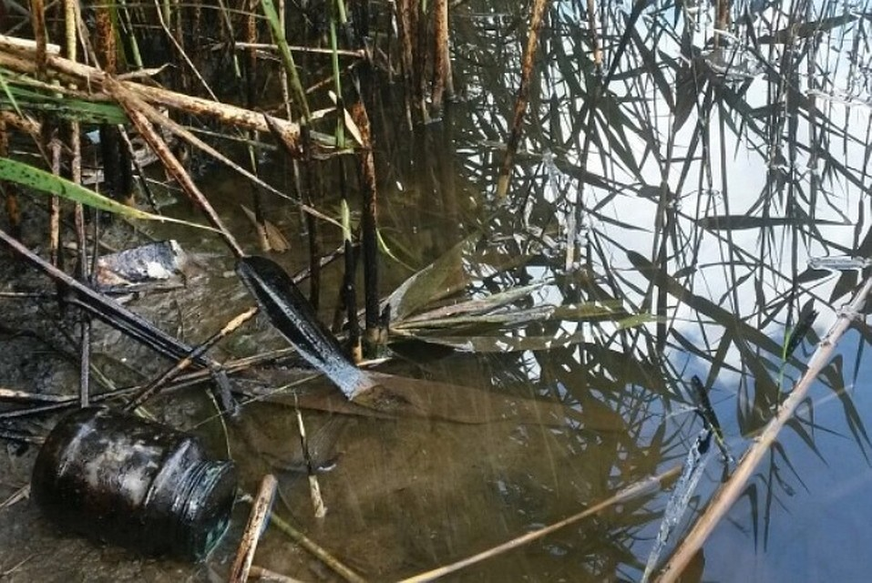 ВКущевском районе возбудили уголовное дело окраже нефти