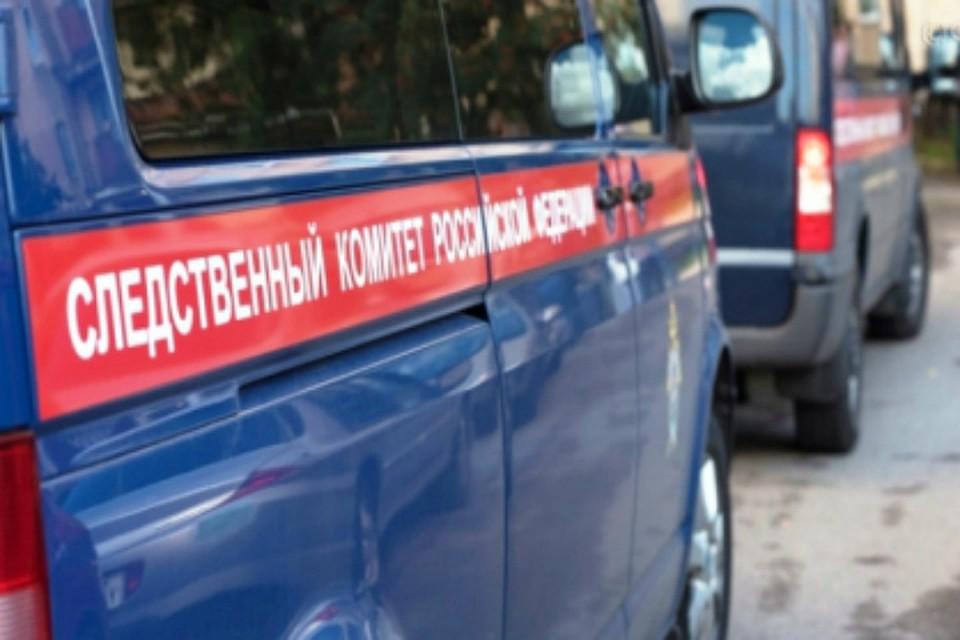 Ребенок скончался отпадения нанего электроплиты вМурманске