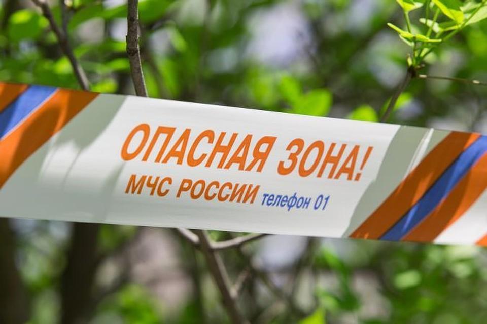 Высокая пожароопасность ожидается вближайшие дни вВолгоградской области