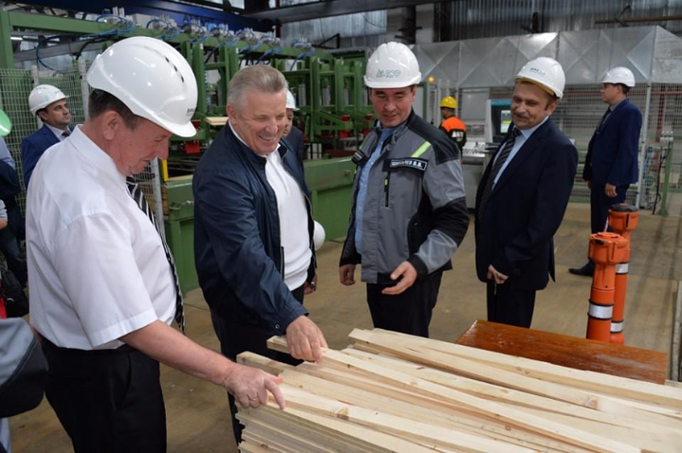 ВАмурске вдни ВЭФ откроют завод попроизводству пиломатериалов