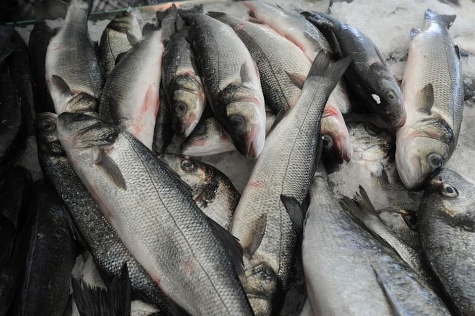 Краснодарец купил рыбы на1 млн руб., аденьги отдавать отказался