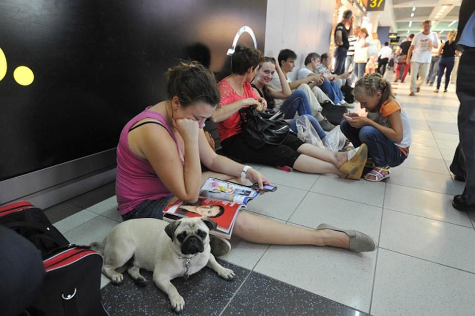 Пассажиры авиакомпании «ВИМ-авиа» снова жалуются назадержки рейсов