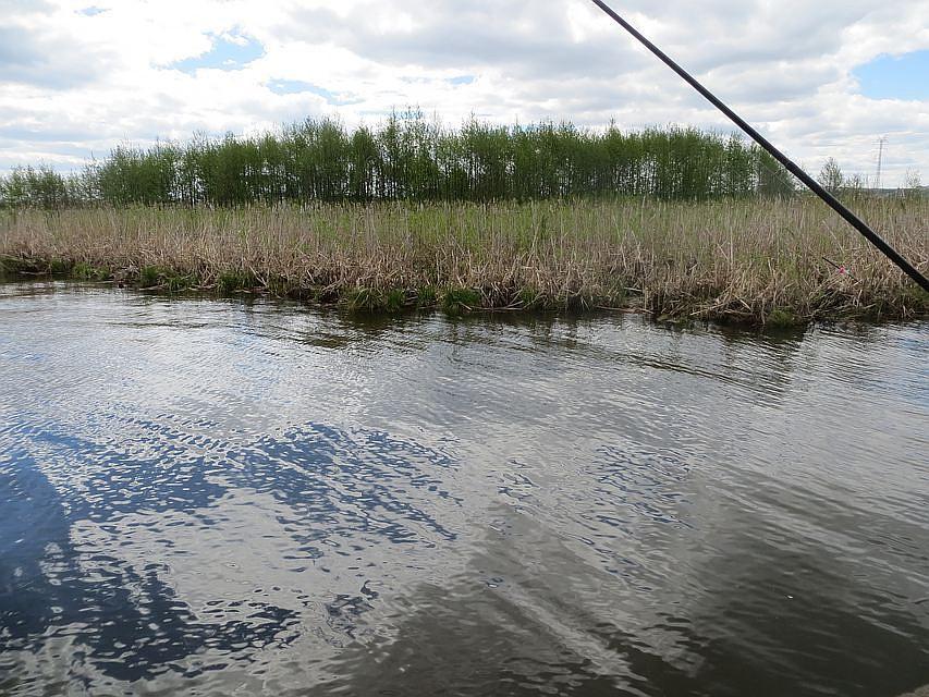 ВКазани вАдмиралтейском пруду установят очистную установку за102 млн руб.