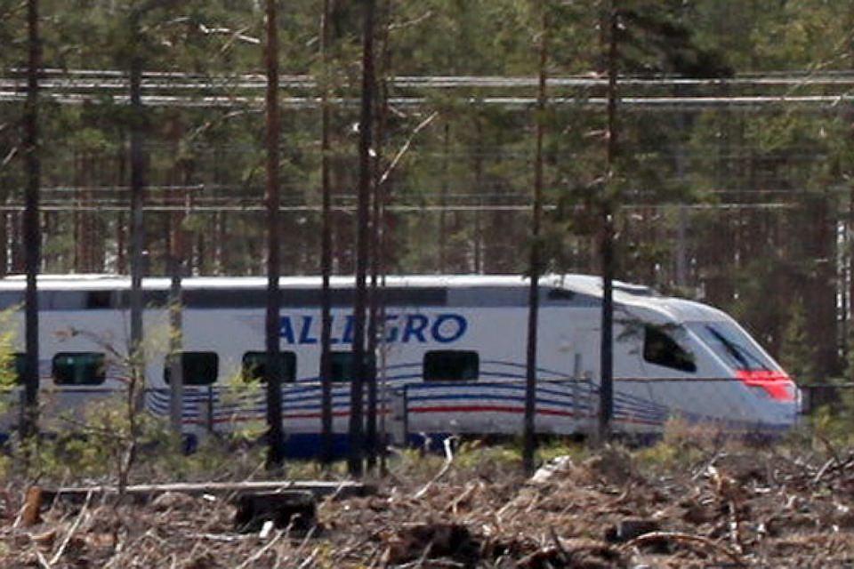 Ужелезнодорожной станции «Удельная» мужчину снес высокоскоростной поезд «Аллегро»