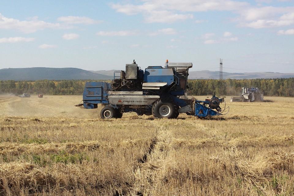 Российская Федерация построит всирийском Хомсе мукомольный завод
