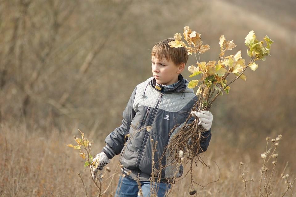 НаКуликовом поле пройдет Акция «Зеленая Дубрава»