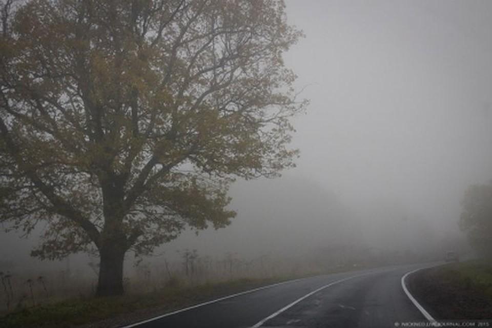 МЧС: ВНовосибирске объявили штормовое предупреждение