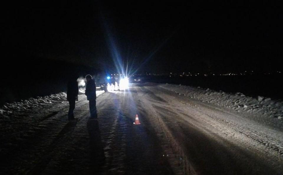 Шофёр Рэно насмерть сбил пешехода натрассе Нефтекамск-Калтасы вБашкирии