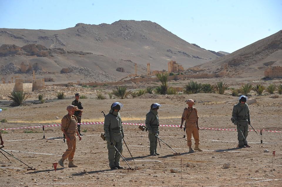 Русские  саперы ивоенные инженеры вернулись вПодмосковье изСирии