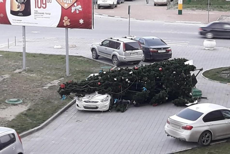 Новороссийск, прячься! —МЧС предупреждает онадвигающемся урагане