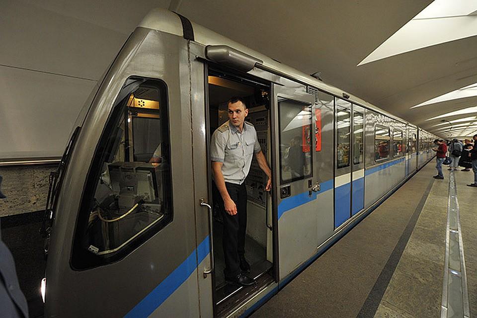 Поезд метро насмерть сбил женщину настанции «Царицыно» в столицеРФ