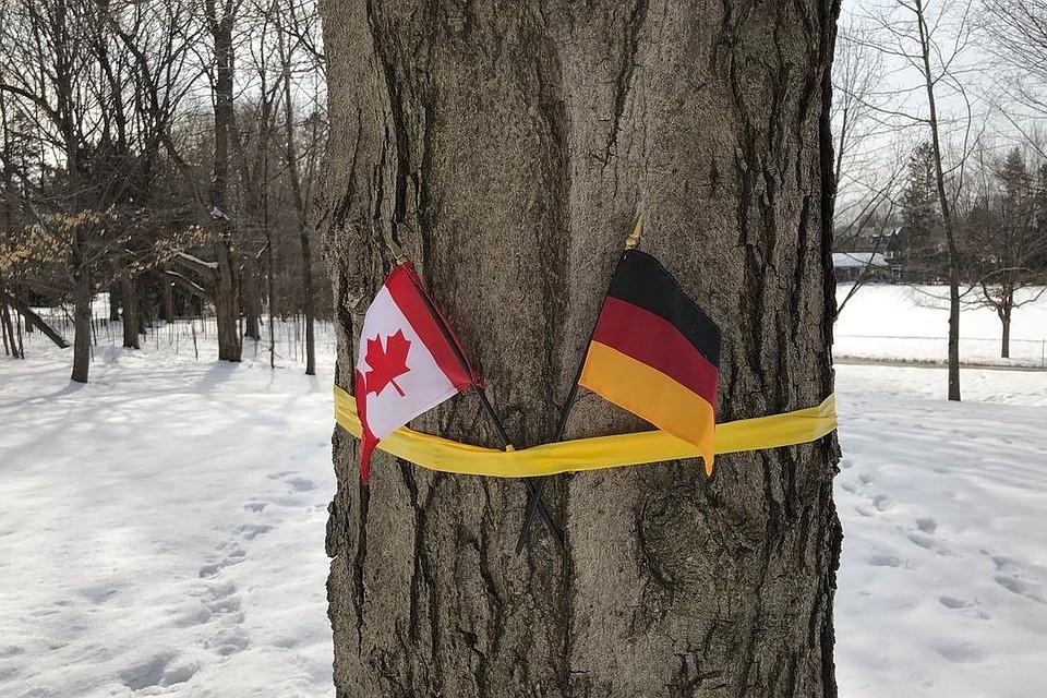 ВКанаде случился конфуз сфлагами вовремя визита короля Бельгии
