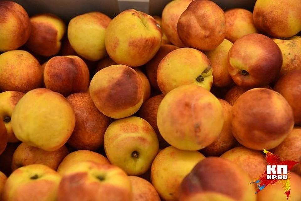 Наприлавках вновь появятся фрукты иовощи изАбхазии