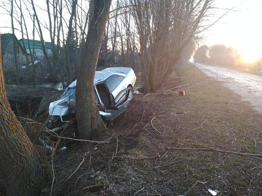 ВОрловской области иностранная машина влетела вдерево: шофёр умер