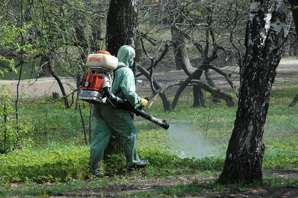 Практически 25 человек заболели крымской геморрагической лихорадкой вРостовской области