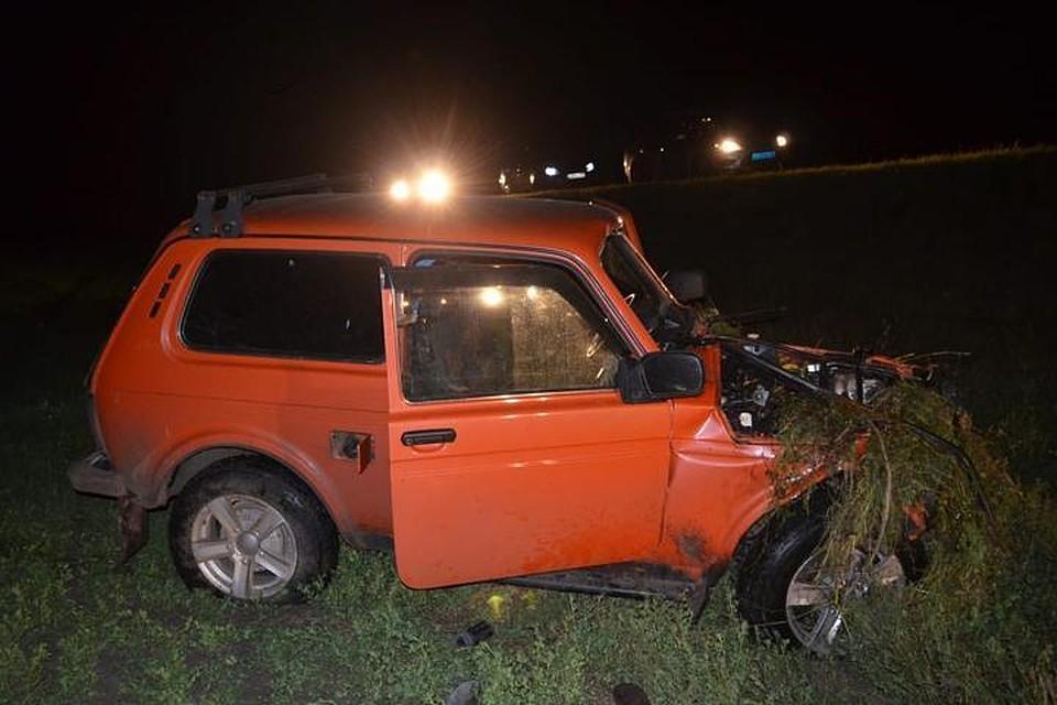 ВБашкирии пассажира машины убило залетевшим всалон бревном