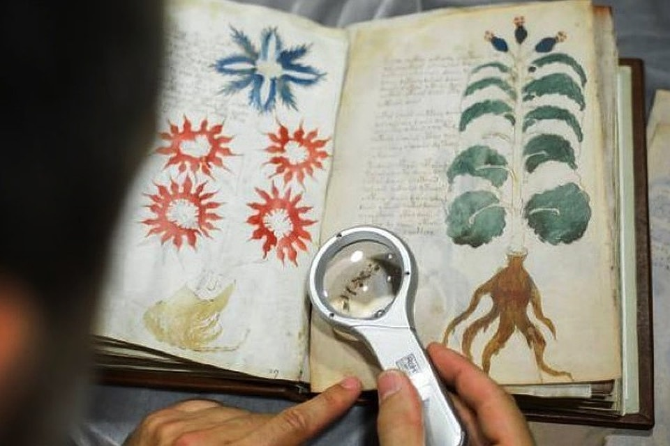 Ученый утверждает, что расшифровал манускрипт Войнича: фото | Korrespondent.net