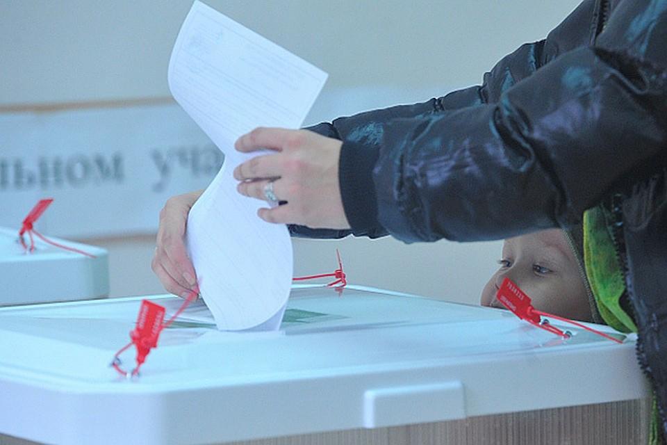 Яблоко потратило на сбор подписей девять миллионов рублей