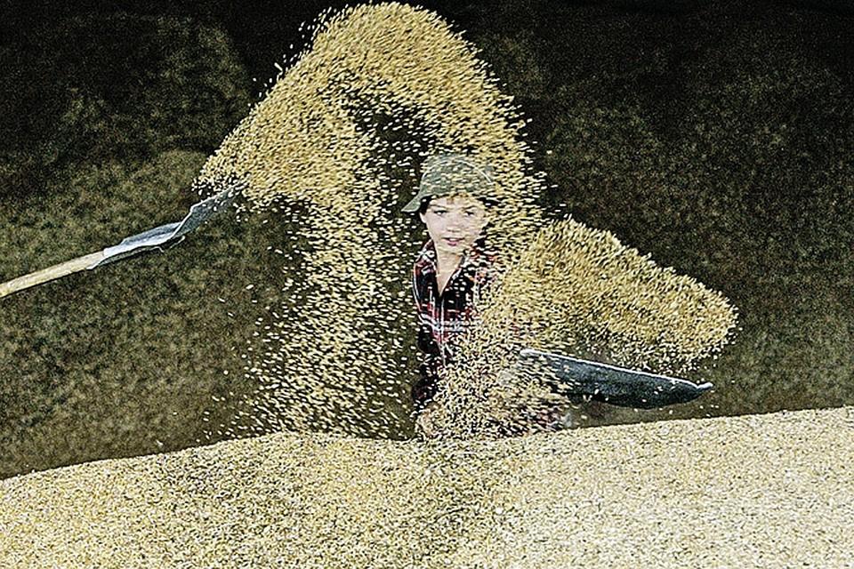 СССР зерно ввозил, а мы вывозим. Можем достигать успеха, когда хотим.