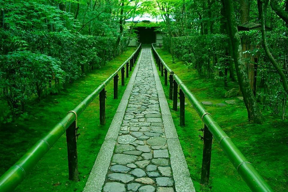 Дзен-сад в Киото, Япония