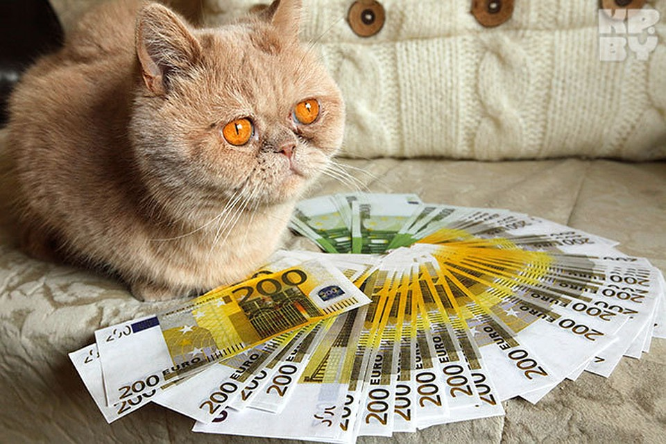 Белорусский рубль (BYR) и Доллар США (USD