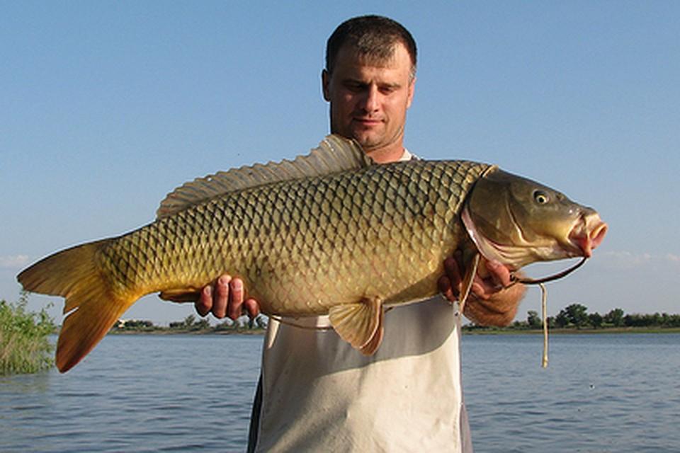 рыбалка в солодники астраханская область