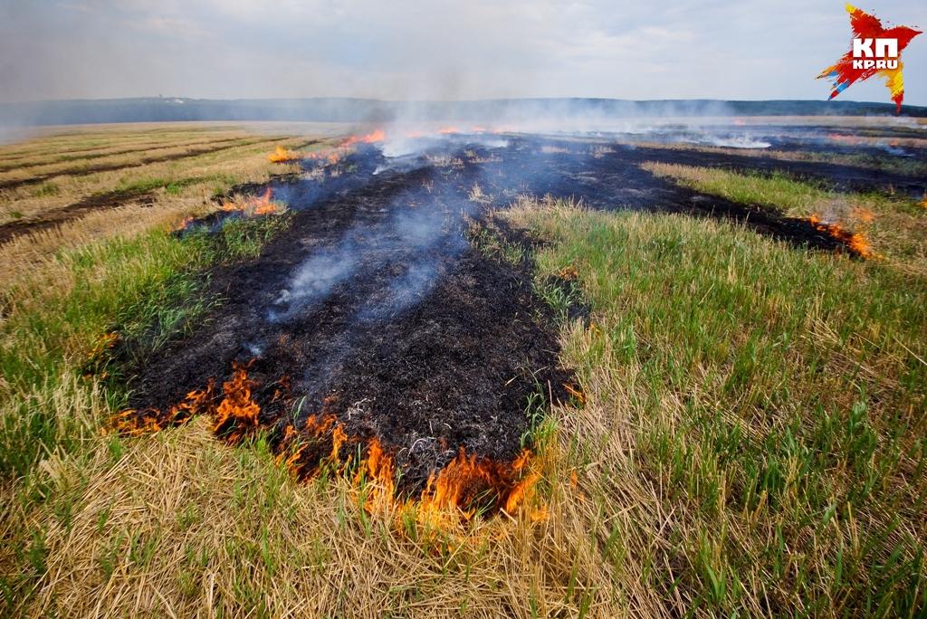ВСвердловской области сохраняются 5 природных пожаров