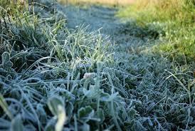 по утрам в северных районах страны температура на поверхности земли опустится до -1…2°C.