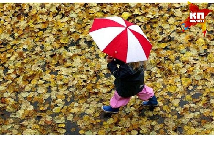 Погода вКирове: выходные будут холодные идождливые