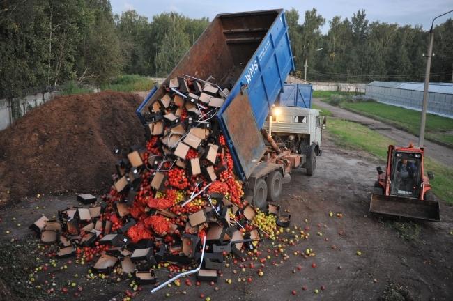 НаДону уничтожили неменее 500кг фруктов иовощей изПольши