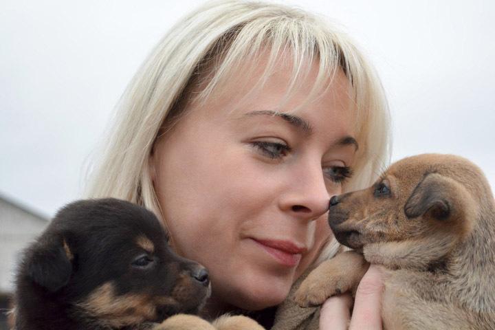 Минчанка подобрала на стоянке 16 щенков и ищет им дом