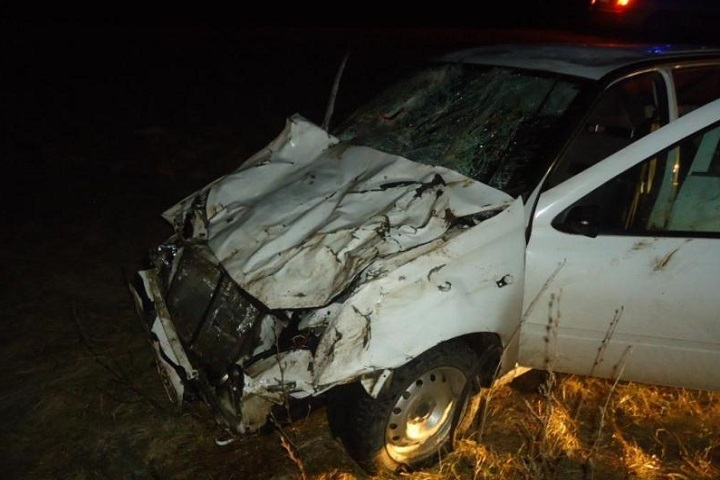 НаСтаврополье шофёр «Лады» врезался вкорову