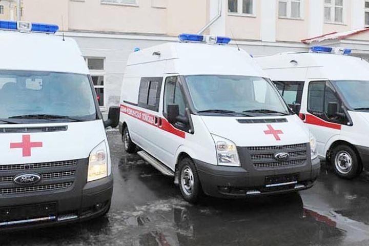 ВКудрово 11-летнего ребенка  загрызли собаки