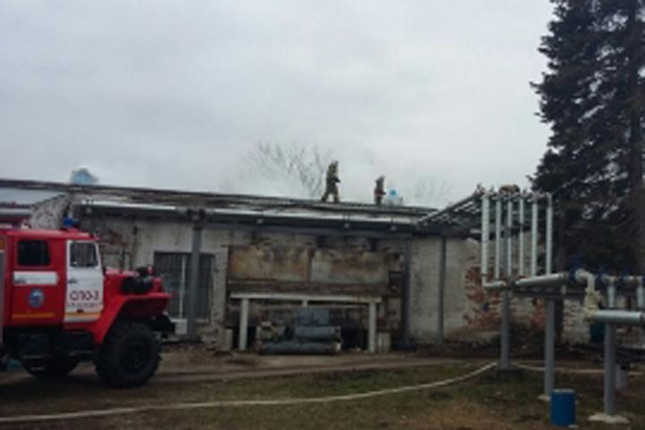 ВКраснодаре утром горела птицефабрика наплощади 200 квадратных метров