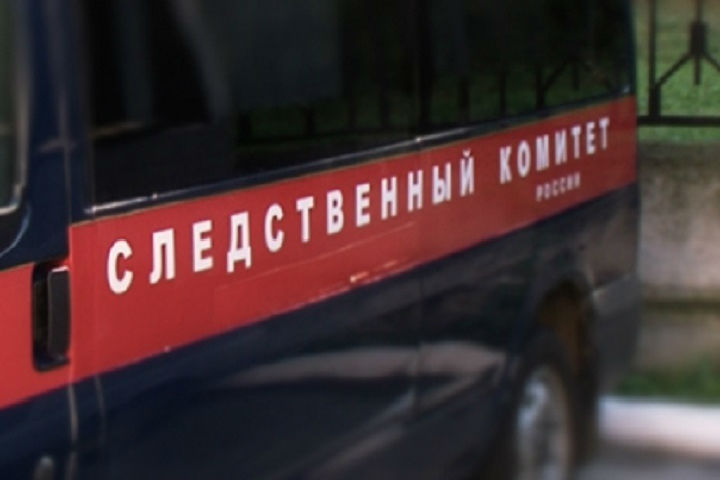 Милиция Пушкина ответит засмерть мигранта вкамере