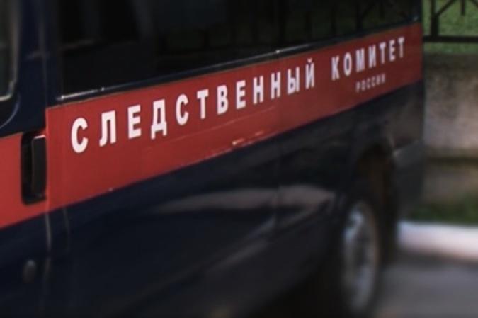 Жительницу Ростовской области подозревают вистязании ребенка
