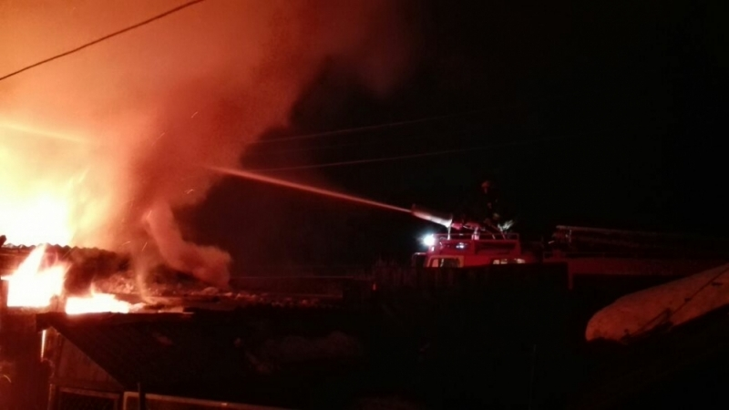 ВТульской области впожаре в личном доме погибли 4 человека