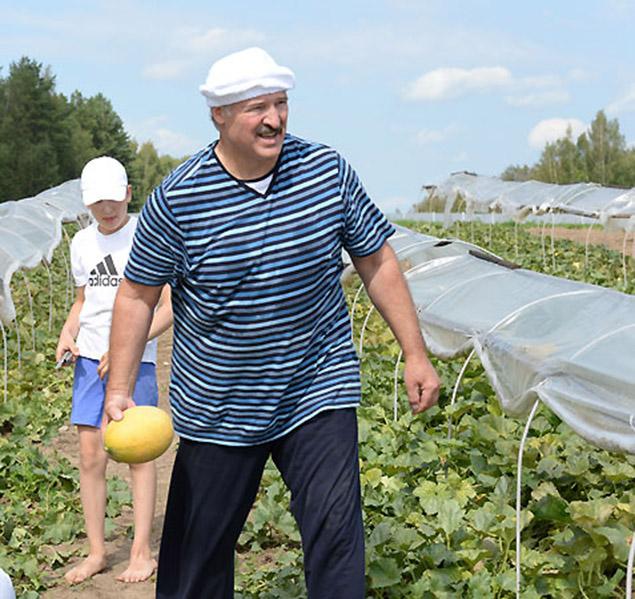 Оказалось дыни растут и в белорусском климате. Фото: president.gov.by