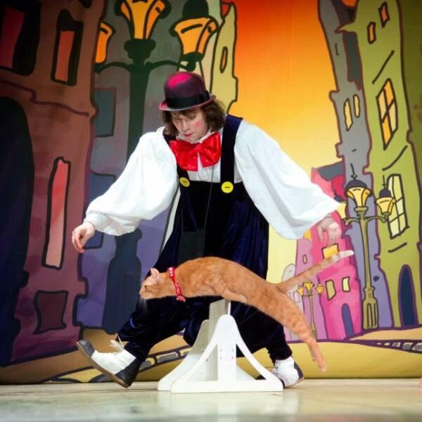 Спектакль «Кошки в городе» в Театре кошек Куклачева
