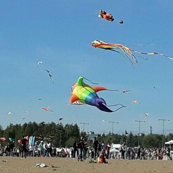 Фестиваль воздушных змеев «Легко Фест»